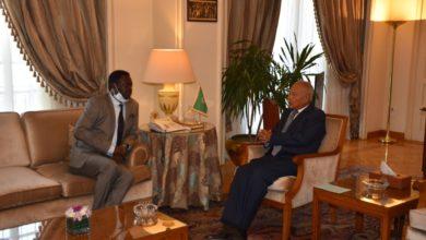 Photo of أبو الغيط يبحث سبل تنفيذ اتفاق جوبا للسلام مع رئيس حركة تحرير السودان