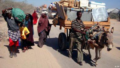 Photo of حركة الشباب تجبر 5 آلاف أسرة على مغادرة ديارها
