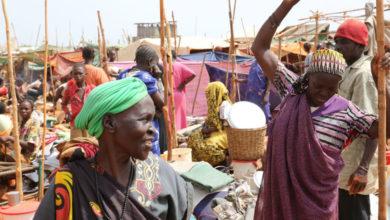 Photo of ديفيد شيرر:عملية السلام لا تزال هشة بجنوب السودان