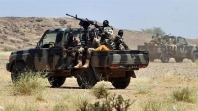 Photo of مقتل 4 عناصر من الأمن النيجري في منطقة حدودية مع الجزائر