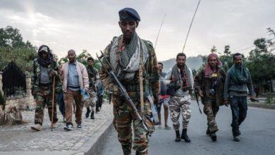Photo of مقاتلو تيغراي يستعيدون بلدات في إقيم أمهرة